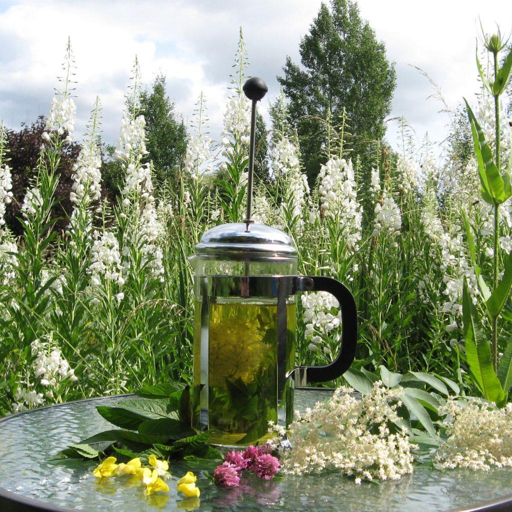 Elderflower and Mint Herb Tea