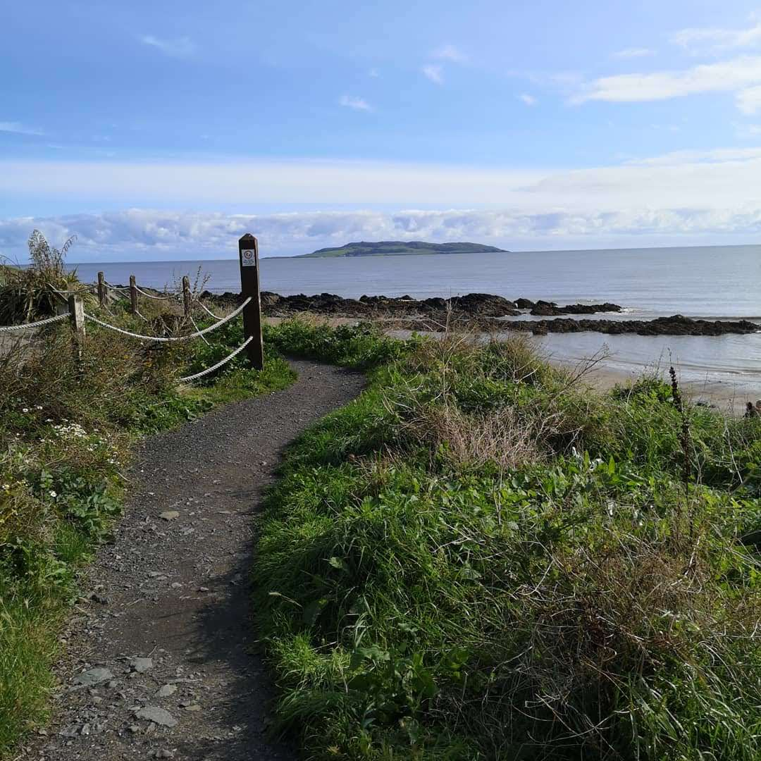 seashore foraging walk