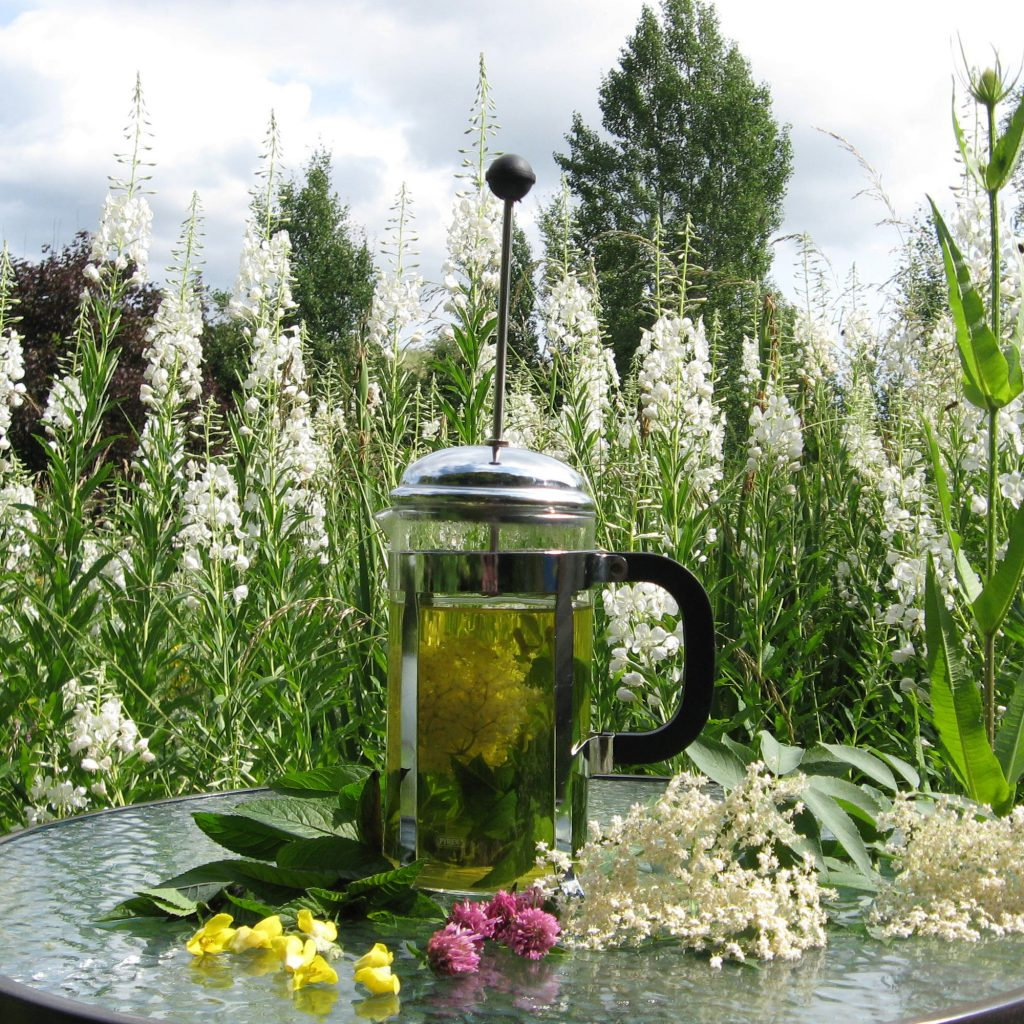 Elderflower and Mint Herb Tea